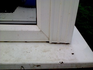 Sills included in clean